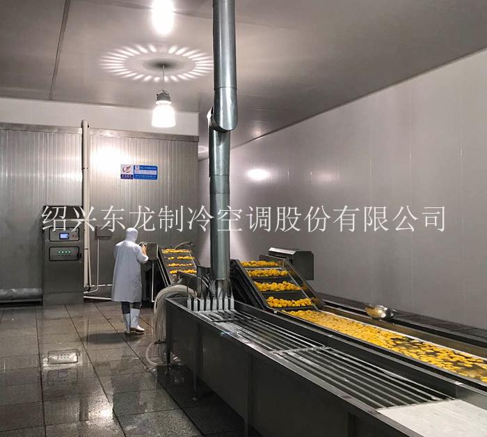 贵州水果速冻生产线
