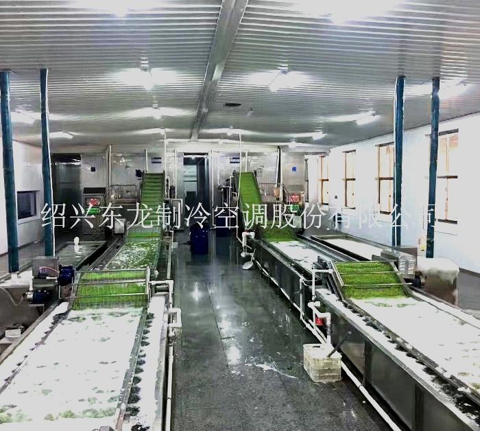 蔬菜速冻生产线